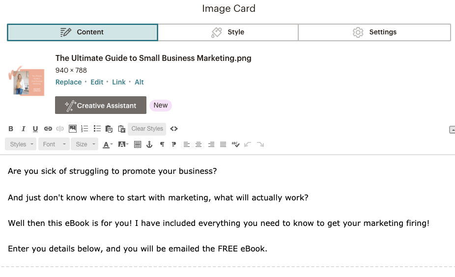 Adding image and text to Mailchimp landing page